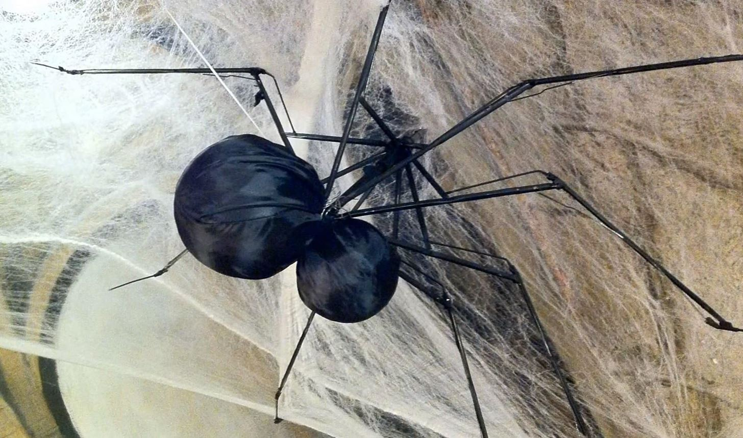 Spiderbrella: How to Turn an Old Umbrella into a Man-Eating Spider