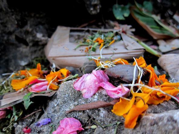 Vibrant Color Photography Challenge: Bali