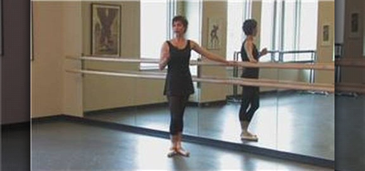 A Plea For Traditional And >> How to Do a plie ballet position « Ballet