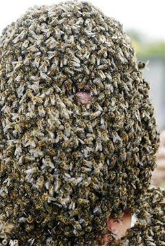 What if Your Face Was Covered in 50,000 Bees?