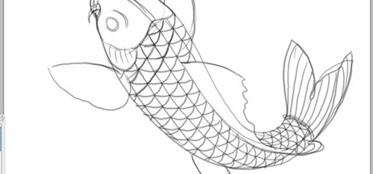 Drawing Lines In Dreamweaver : How to draw a koi fish in photoshop «