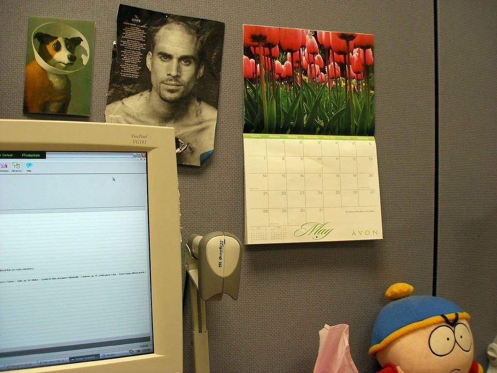 How to Prevent the Harmful Effects of Working in a Windowless Cubicle