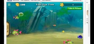 Hack EXP and money in Fish World (09/12/09)