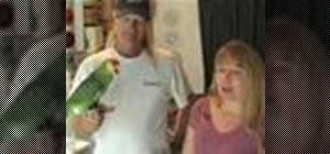 Keep parrots as pets