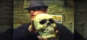 Make a latex skull mold to make a plaster skull
