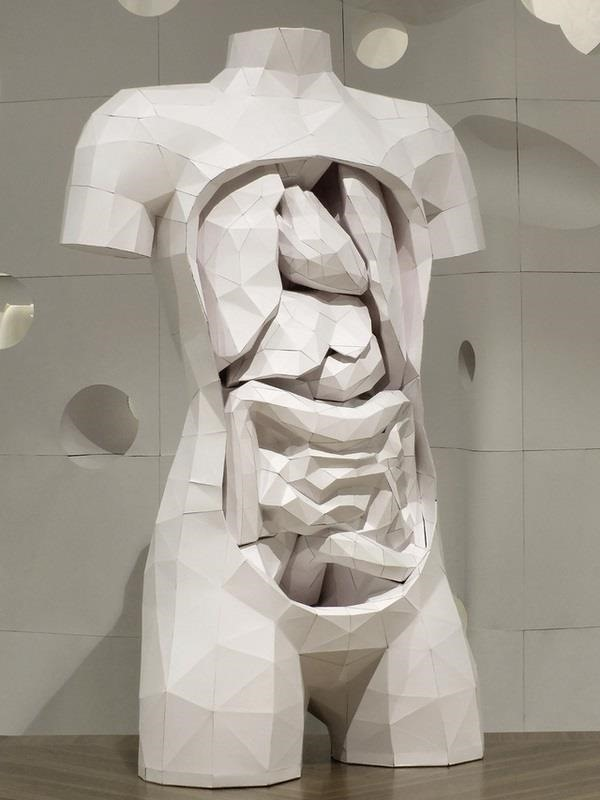 PhD in Paper Craft: Make This Insanely Detailed & Anatomically Correct Human Torso—Complete with Removable Organs