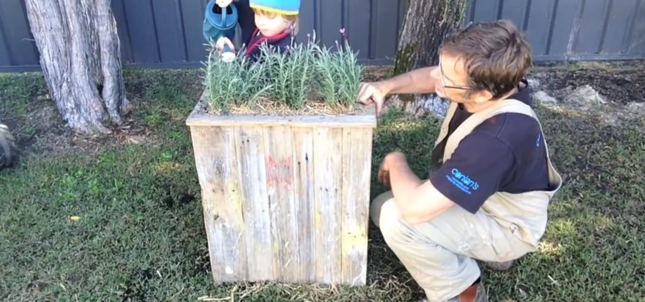 Make an Awesome $7.50 Planter Box