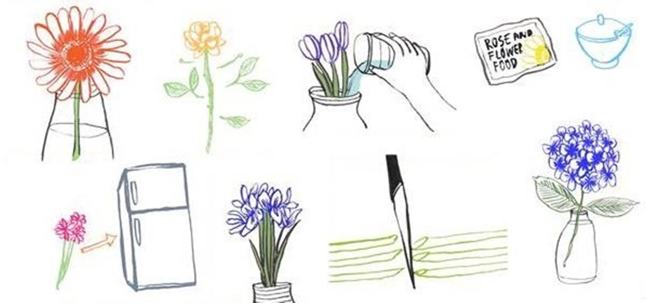 How To: Tips for Keeping Your Flowers Fresh & Long-Lasting