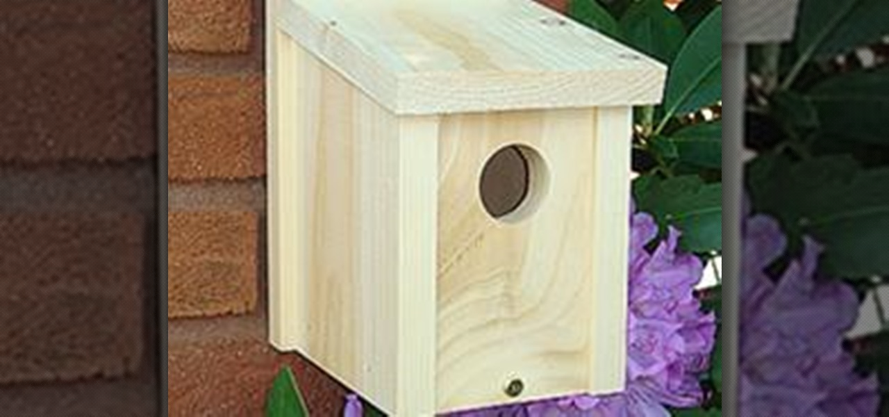 How to build a basic birdhouse construction repair for Basics of building a house