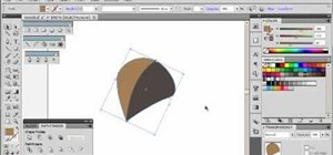 Make a leaf using vector graphics in Adobe Illustrator 5