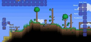 Craft a wooden platform in Terraria