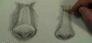 Draw the female nose (step-by-step)
