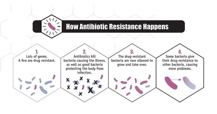 Antibiotic Resistance—What You Need to Know About the War Against Superbugs