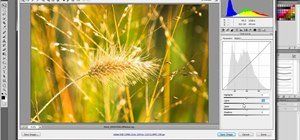 Use the Camera RAW feature in Adobe Photoshop CS5