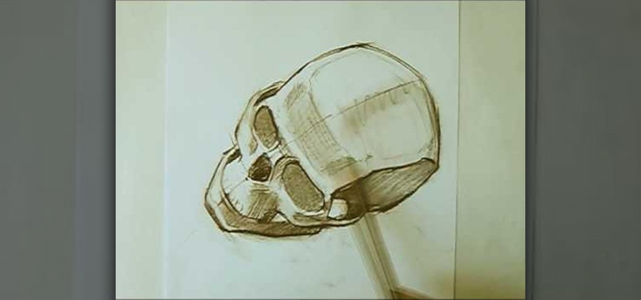 How To Draw A Skull With Proper Proportions Drawing