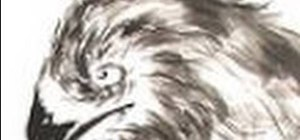 Paint an eagle in Sumi-e style
