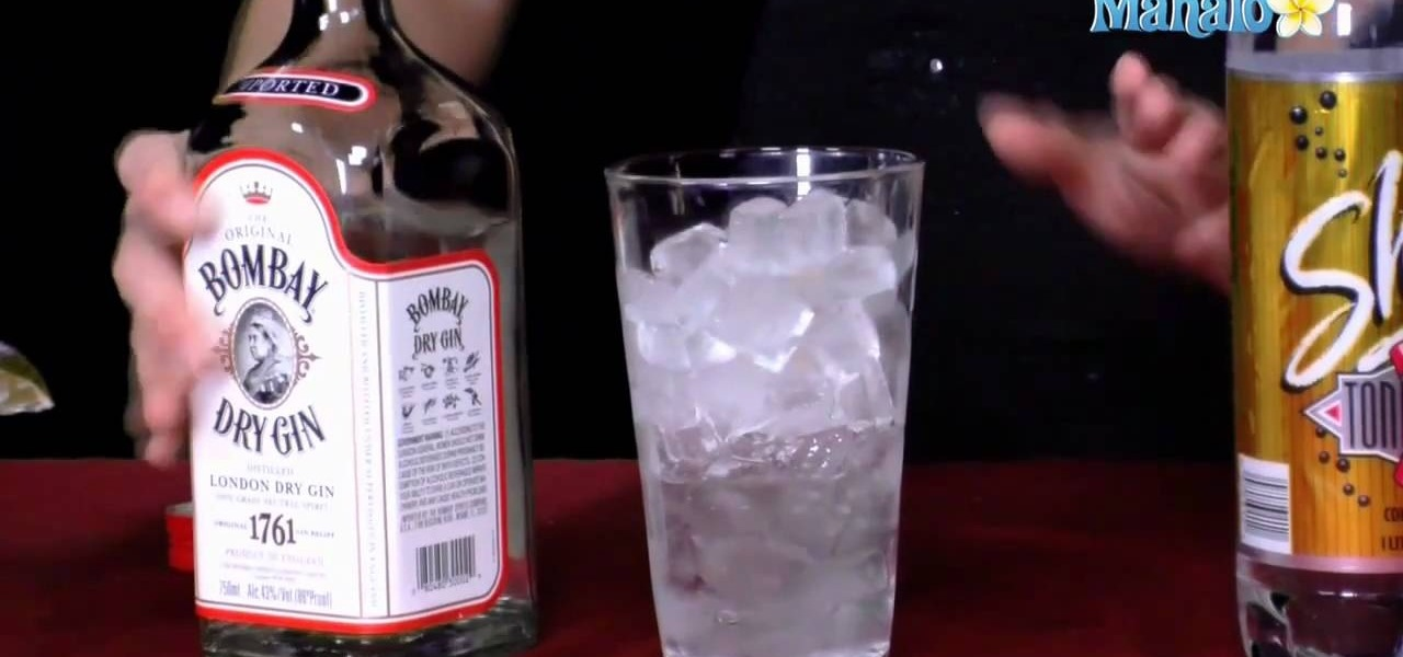 How to make a gin tonic with a hot girl gin for Best mix with gin