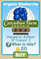 Cascadian Farms - Organic Blueberries