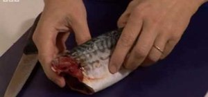 Fillet a mackerel with the BBC's Good Food