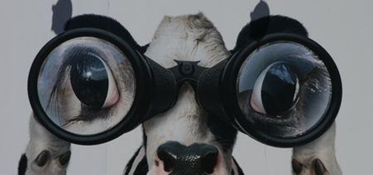 Use BeEF and JavaScript for Reconnaissance