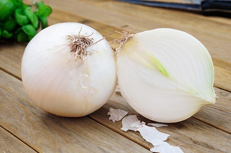 White onion க்கான பட முடிவு