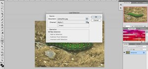 Use the hue and saturation tools in Adobe Photoshop