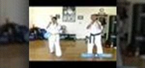 Perform basic Kyokushin karate techniques