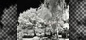 Do infrared photography
