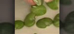 Cook fava beans