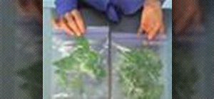 Dry and freeze herbs