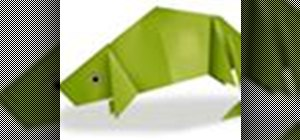 Origami a chameleon Japanese style