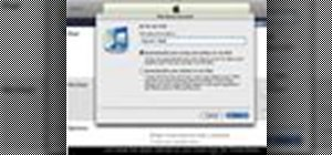 Start using your iPod with iTunes