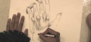 Draw a hand in detail