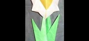 Make a beautiful origami daffodil for intermediate origami students