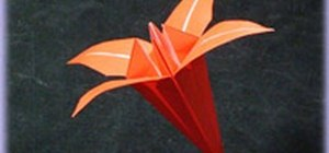Fold a beautiful origami iris flower