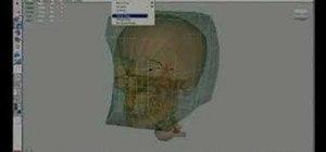 Model a human head using Maya