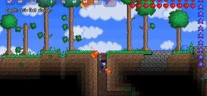 Make mushroom and star farms in Terraria