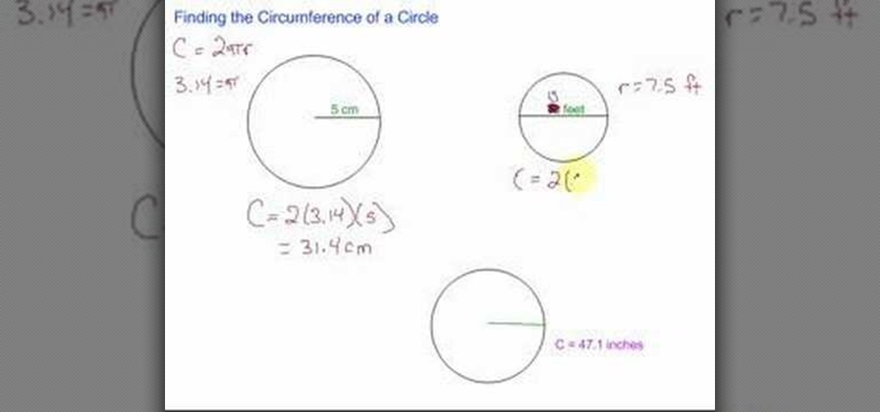 Perimeter and circumference homework help