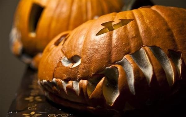 How to Prevent Carved & Uncarved Pumpkins from Rotting