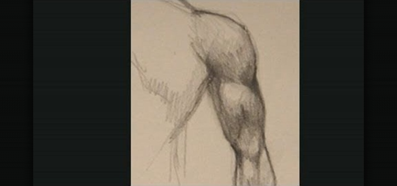How To Draw Muscles Arm How To Images Collection