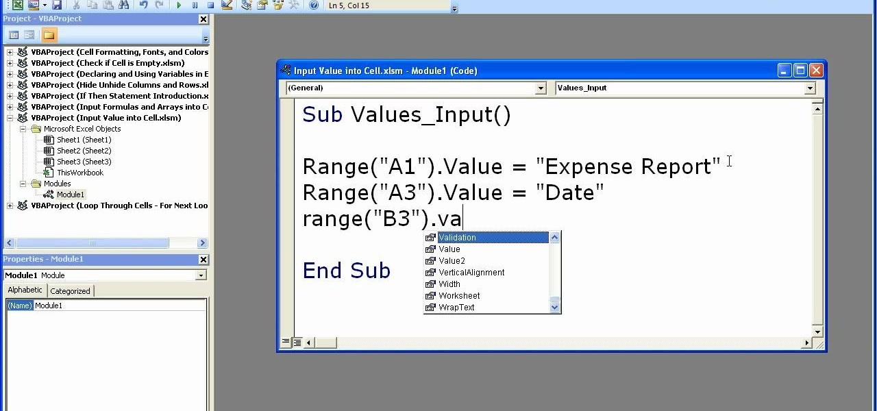 How To Input Values Formulas Into A Cell In Excel Macros. How To Input Values Formulas Into A Cell In Excel Macros Microsoft Office Wonderhowto. Worksheet. Vba Reference Worksheet By Cell Value At Mspartners.co