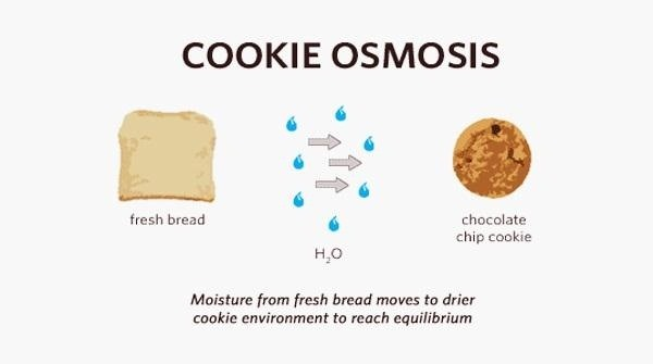 How to Make Stale Cookies Fresh Again with a Slice of Bread