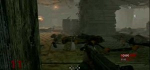 Do the Hell Hound zombie glitch in Call of Duty 5