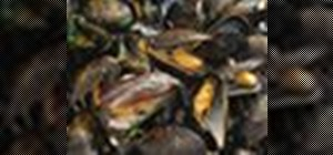 Cook delicious moules marinière with fresh (and lively) mussels
