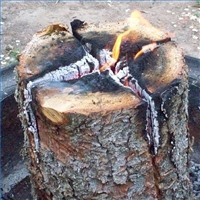 HowTo Make a Swedish Log Candle