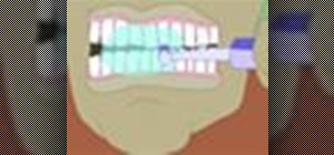 Ensure the continued health of your gums and prevent gingivitis