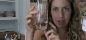 Get rid of fruit flies cruelty-free