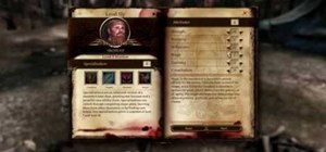Take advantage of a glitch in Dragon Age: Origins to reassign your stats