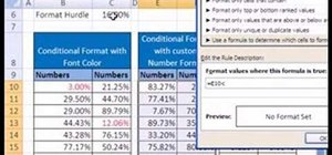 Use conditional & custom number formatting in MS Excel