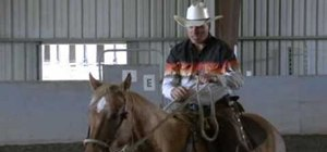 Teach a horse to jog and canter under saddle